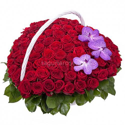 ОСНОВЕ Руководство корзина сердце из роз фото радиаторы