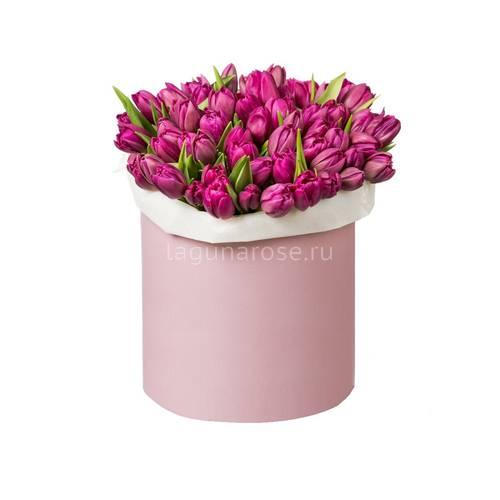 Цветы на 8 марта санкт - петербург купить бумажные цветы для скрапбукинга москва